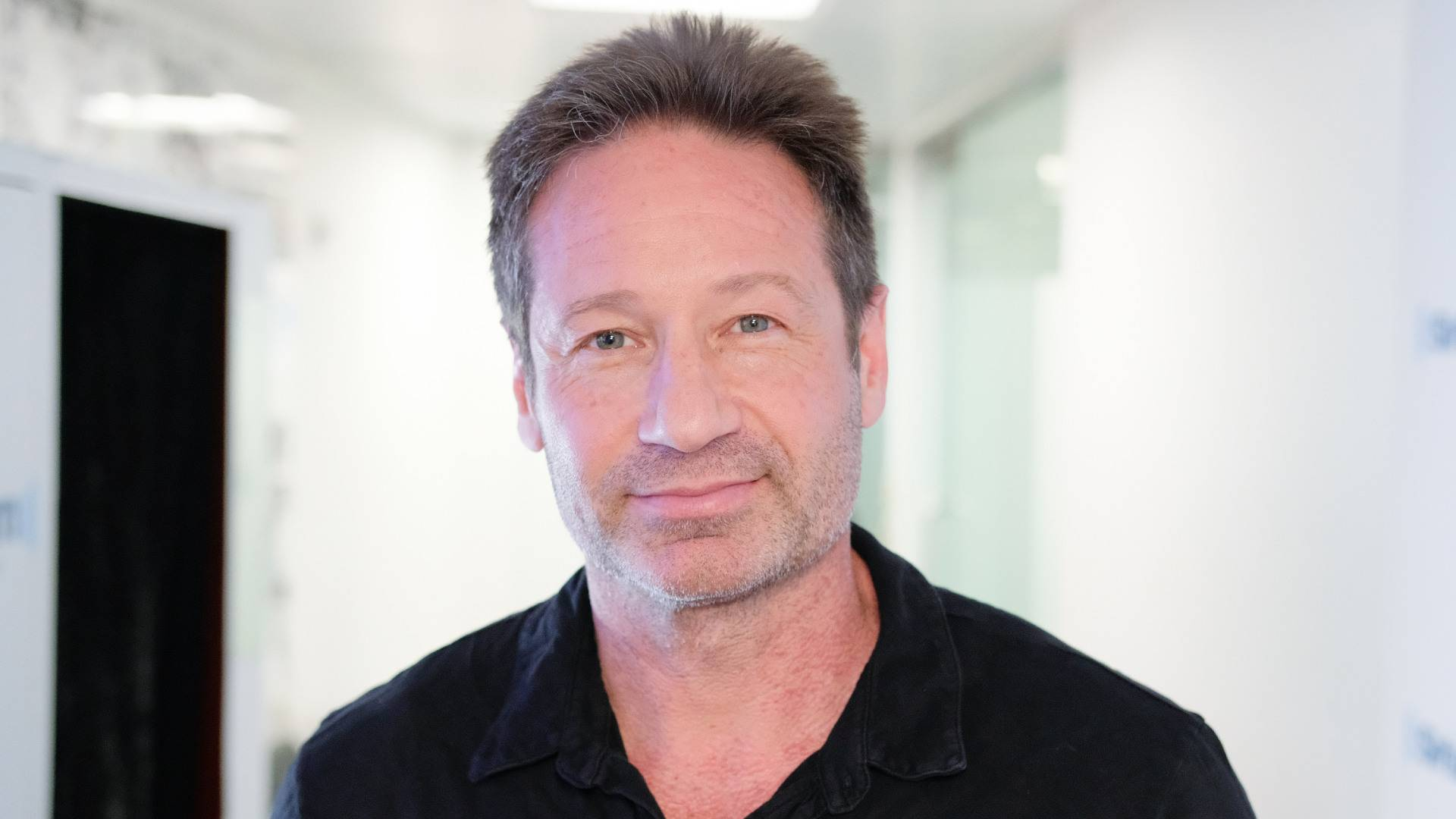 David Duchovny, foto: Getty Images